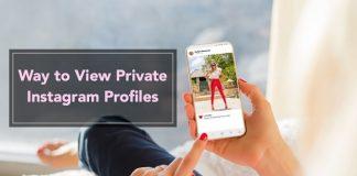 View Private Instagram Profile