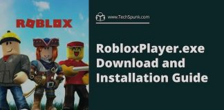 RobloxPlayer.exe file